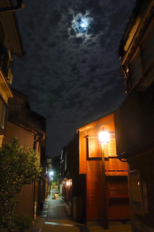 見上げ月 主計町