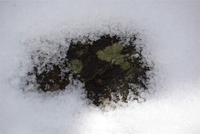 4−3雪の中